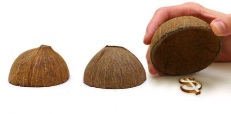 shelldollar